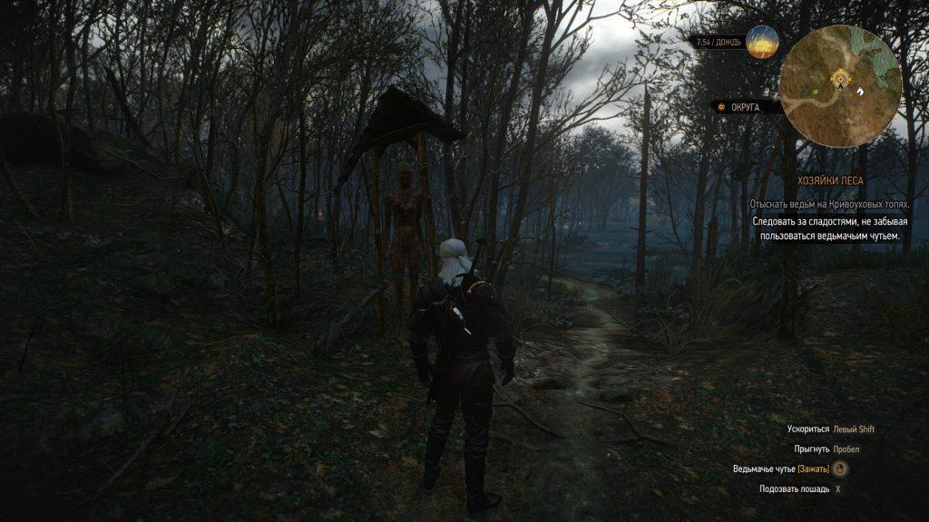 Прохождение Ведьмак 3 Хозяйки леса (Велен часть 36)